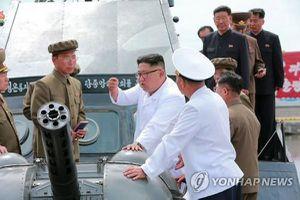 Triều Tiên cần phát triển cảng để tái sinh kinh tế