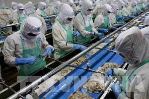 Không tháo gỡ 'thẻ vàng', ngành thủy sản Việt Nam mất cơ hội xuất khẩu