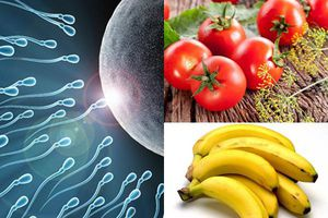 10 thực phẩm đàn ông nên ăn để tăng số lượng và chất lượng tinh trùng