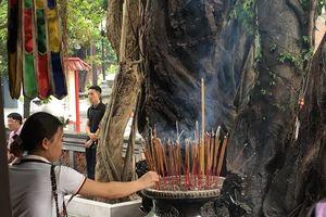 Ngày rằm âm lịch vào chùa: Thắp hương như thế nào cho đúng?