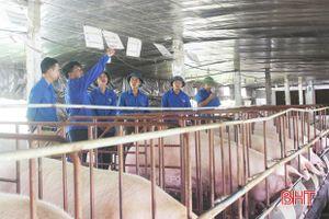 Hà Tĩnh: Nhiều đoàn viên thanh niên được vay vốn phát triển kinh tế