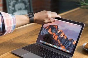 Cựu chuyên gia của NSA phát hiện lỗ hổng bảo mật trên phiên bản MacOS Mojave của Apple