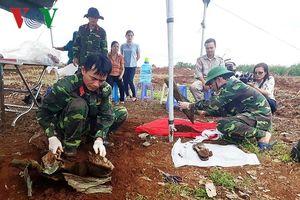 Xác minh thông tin ban đầu của 37 hài cốt liệt sĩ tìm thấy ở Quảng Trị