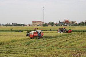 Phát triển đồng bộ, Thái Thụy tiến đến chuẩn NTM