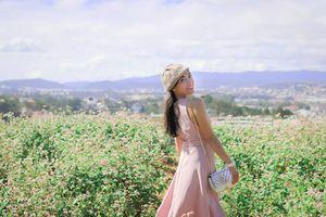 Du lịch Hà Giang mùa hoa tam giác mạch nên đi mấy ngày?
