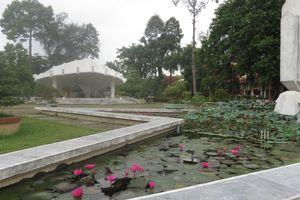 Kỳ thú hệ thống cây xanh trong Khu di tích Nguyễn Sinh Sắc