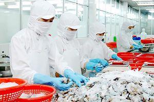 Nỗ lực gỡ thẻ vàng hải sản
