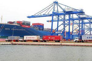 50.000 tỷ đồng đầu tư dự án Trung tâm logistics và Cảng tổng hợp Cái Mép Hạ