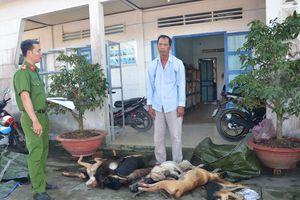 Chở 11 con chó đi bán thì bị bắt
