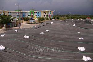 Cát bay mù mịt tại khu tái định cư Long Sơn, Bà Rịa - Vũng Tàu