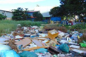 Đà Nẵng: Bãi rác lộ thiên trên đường Đinh Công Trứ, người dân khốn khổ