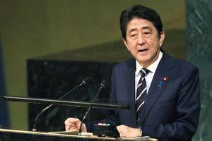 Thủ tướng Nhật đề cao ý nghĩa của việc ký hiệp ước hòa bình với Nga