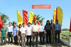 LĐLĐ TP.Cần Thơ: Gắn biển công trình chào mừng Đại hội Công Đoàn Việt Nam