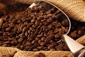 Ngày 27/9: Giá hồ tiêu bất ngờ tăng 1.000 đồng/kg, cà phê nhích nhẹ