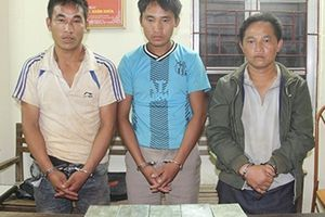 Bắt 3 đối tượng ở Sơn La, thu giữ 10 bánh heroin