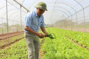 Sản xuất nông nghiệp thông minh: Hướng phát triển đúng và trúng