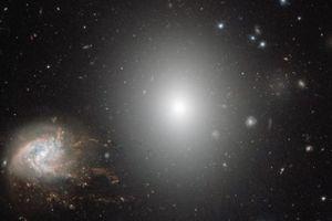 Sửng sốt hơn 1.000 thiên hà tụ trong cụm sao khủng Coma
