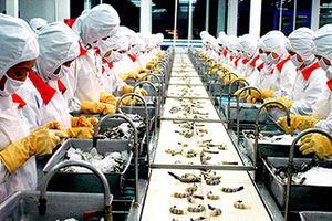 Thủy sản Minh Phú (MPC) muốn tăng vốn lên 2.157 tỷ đồng