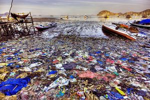 Thảm họa môi trường mang tên nilon