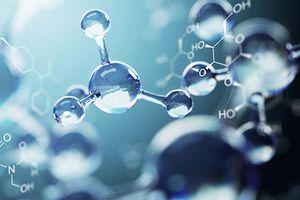 Chất chống oxy hóa có trong những thực phẩm nào?