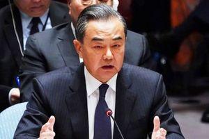 Ngược chiều sức mạnh USD-NDT: Cơ hội vàng ở Trung Quốc