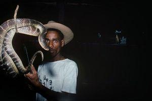 Bộ lạc người rắn