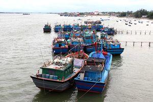 Bài 2: Thực trạng phát triển kinh tế biển và những vấn đề đặt ra