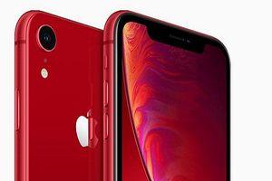 Apple dồn công lực sản xuất iPhone XR, kịp bán vào ngày 26/10