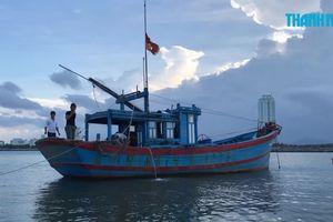 Ngư dân câu được cá nghi là sủ vàng ở cầu Thuận Phước