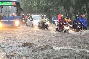 Cửa ngõ sân bay Tân Sơn Nhất ngập lút bánh xe trong cơn mưa lớn