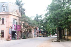 Vĩnh Phúc: Nông thôn mới Ngọc Thanh khởi sắc
