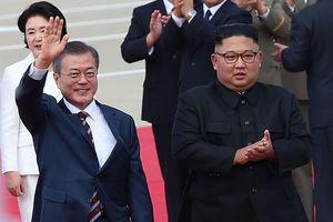Ông Kim Jong Un cho đôi 'quốc khuyển' đi qua DMZ để tặng TT Hàn Quốc