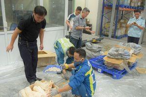 2 công ty đứng tên từ chối nhận gần 1 tấn ngà voi, vảy tê tê bị bắt ở Nội Bài