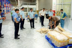 Bắt giữ số lượng lớn ngà voi, tê tê tại Cửa khẩu Sân bay quốc tế Nội Bài