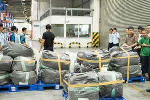 Cận cảnh gần 1 tấn ngà voi, vẩy tê tê nhập lậu vừa bị bắt ở Nội Bài