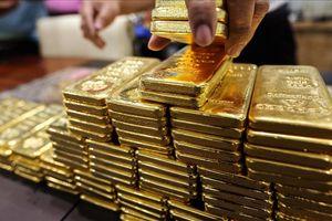 Giá vàng trong nước đang dần khởi sắc