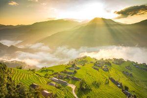 'Mùa vàng' Hoàng Su Phì đẹp hút hồn du khách