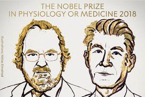 Nobel Y học 2018 dành cho nghiên cứu chữa ung thư