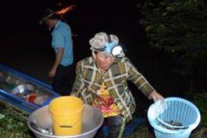 Lũ về mang nhiều cá linh ở miền Tây mùa nước nổi, bán ở chợ Âm phủ