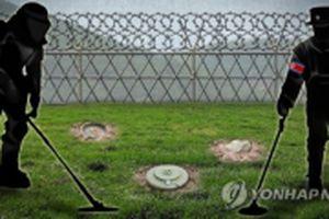 Hàn Quốc và Triều Tiên bắt đầu gỡ mìn trong khu phi quân sự