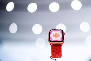 Apple Watch sắp vào mùa bội thu