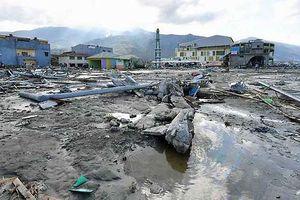 1.200 tù nhân vượt ngục trong thảm họa động đất ở Indonesia
