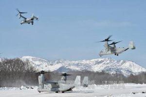 Dù người dân Nhật Bản phản đối, Mỹ vẫn điều thêm 5 máy bay Osprey tới căn cứ Yokota