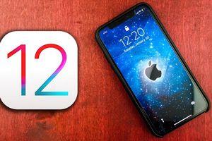 Điểm danh 4 tính năng mới trên bản beta iOS 12.1