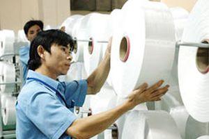 Doanh nghiệp dệt chỉ có Sợi Thế Kỷ tận dụng được cơ hội chiến tranh thương mại Mỹ-Trung
