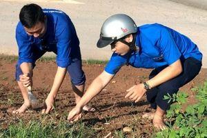 Những tuyến đường hoa của tuổi trẻ huyện Quốc Oai