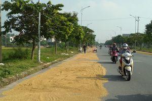 Vĩnh Phúc: Nỗi lo an toàn giao thông ngày mùa