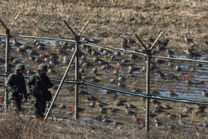 Triều Tiên – Hàn Quốc bắt đầu gỡ mìn dọc biên giới