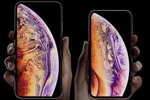 Khảo sát cho thấy nhiều người có kế hoạch mua iPhone Xs, Xs Max