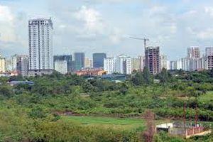 Điều chỉnh quy hoạch sử dụng đất tỉnh Đồng Tháp